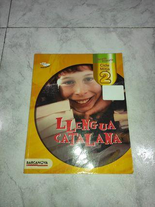 Llengua Catalana quart de primària