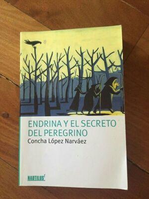 Endrina y el secreto del peregrino.