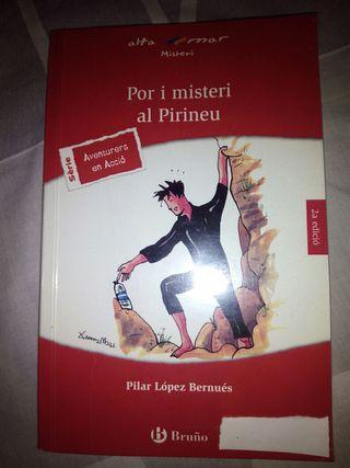 Libro: Por i misteri al Pirineu. ISBN 978842167863