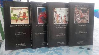 Libros lectura obligatoria secundaria
