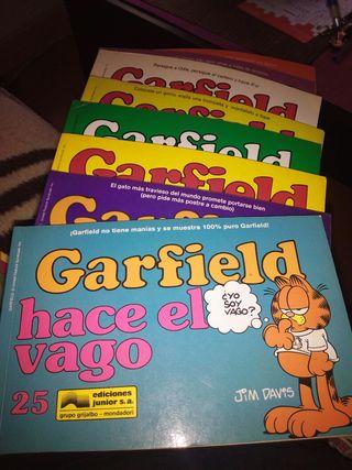 Cómics de Garfield Ediciones Junior. Varios tomos a 2 euro s cada 1.