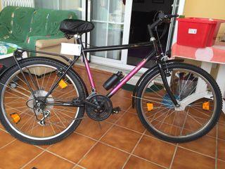 Bicicleta chimano señor holandés