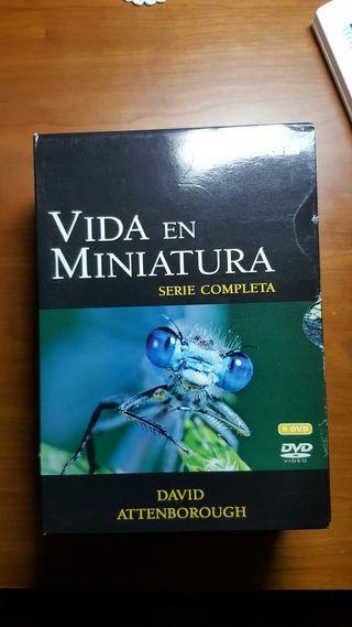 5 DVD's de insectos