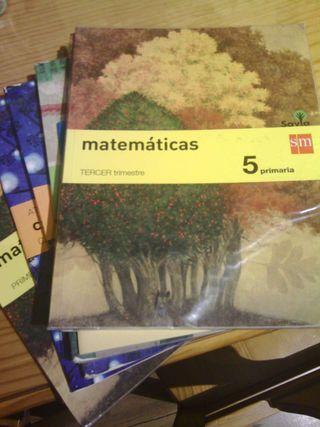 Libros quinto. S. M.
