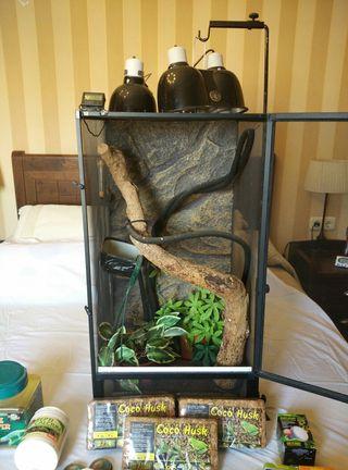 Terrario para reptiles (NO venta de animales)
