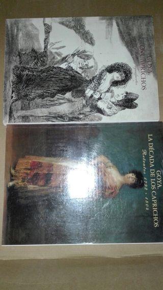 2 libros sobre Goya.