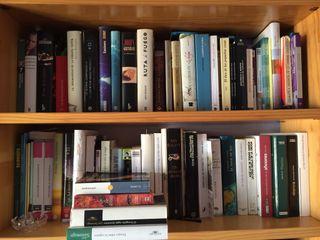 Grandes novelas (preguntar título y precio