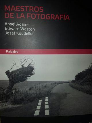 Maestros de la Fotografia.