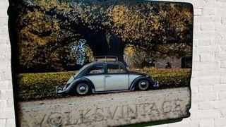 Cuadro vw escarabajo autum Park rcbdesign