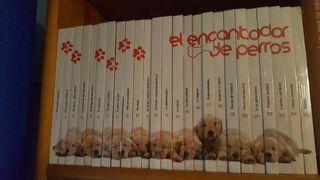 Colección el encantador de perros libros +DVD.