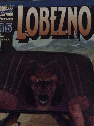 Lote n. 2 Comics Forum Zinco Marvel Dc Comics
