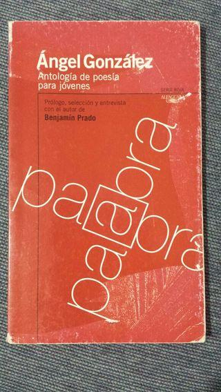Libro de poesía juvenil