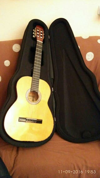 Funda de guitarra