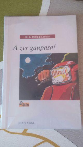 libro ESO A zer gaupaza!