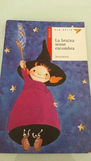 La bruixa sense escombra