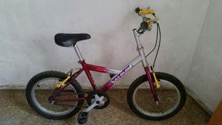 Bicicleta niño niña