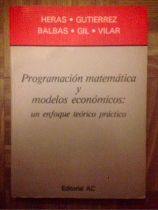 Programación matemática