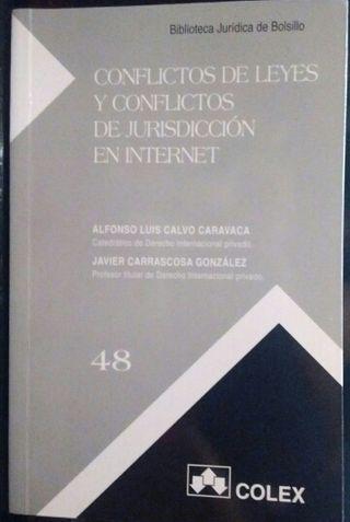 Conflictos de leyes y de jurisdicción en Internet