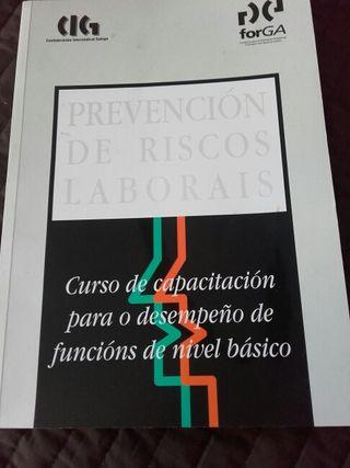 Libro prevención de riesgos laborais