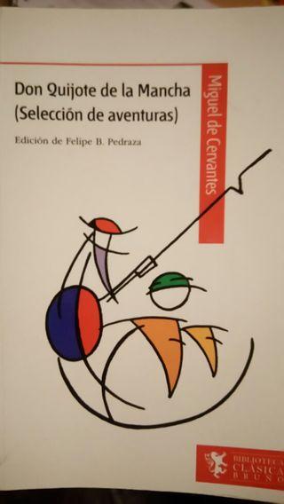 Don Quijote de la mancha seccion aventuras
