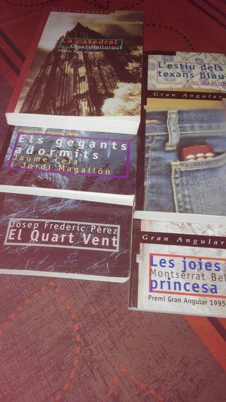Colecció de 6 llibres gran angular editorial cruïlla