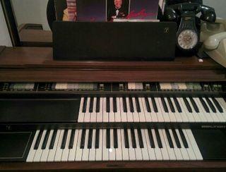 Organo Belton