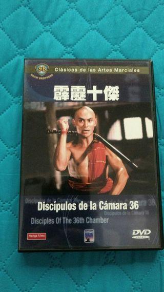 PELÍCULA DVD LOS DISCÍPULOS DE LA CAMARA 36