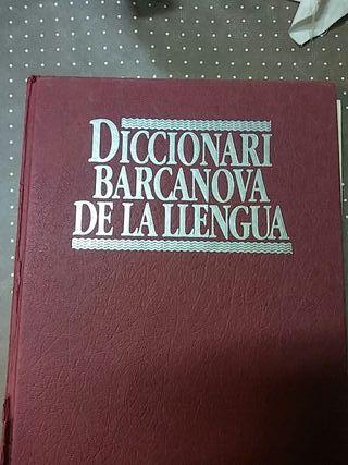 Diccionarios Muy practicos 5€. cada uno