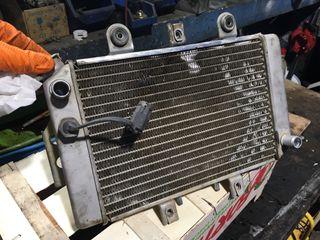 Radiador Polaris Predator