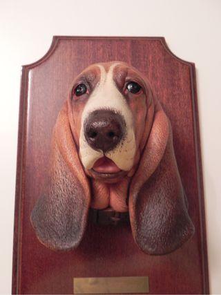 Conjunto 7 Caras vintage razas caninas