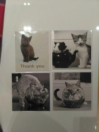 Postales gatos