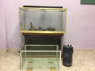 Acuario 160l + acuario 80l