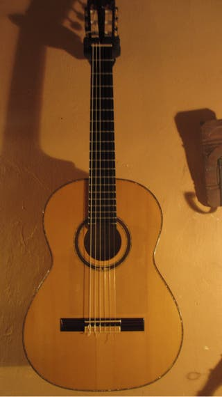 Guitarra Ortega m6cs
