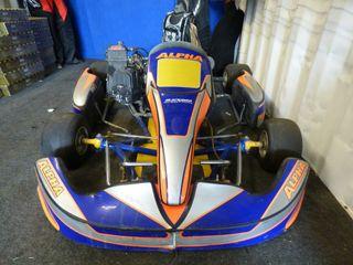 Kart 125cc Rotax de competición..