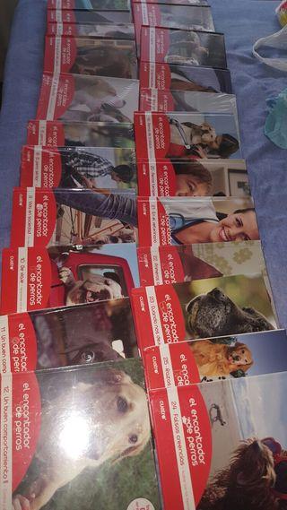 Colecion el encantador de perros