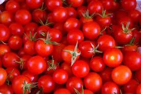 Semillas de tomate cherry.