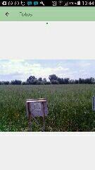 Parcelas rusticas 2500m2 terreno alquiler