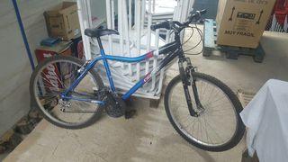 Bicicleta Agece FAT F1.7