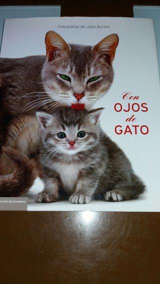 Libro de fotos de gatos