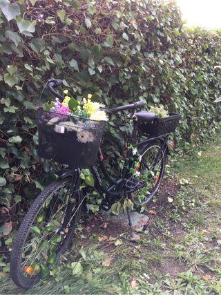Bicicleta vintage sin usar