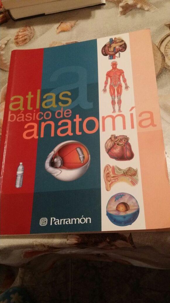 Atlas básico de anatomía de segunda mano por 10 € en Terrassa en ...