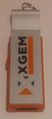Pendrive/abridor memoria USB de Xgem 8 Gb