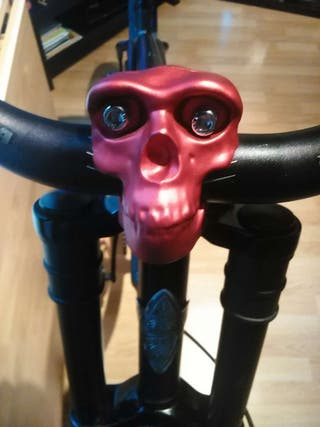 Bici Custom