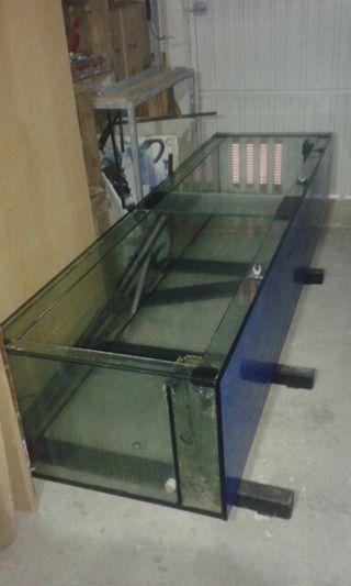 acuario de 1000l urna