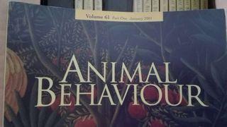 Revista ANIMAL BEHAVIOUR año 2001