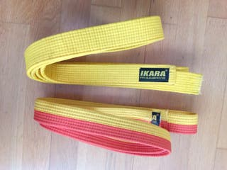 Cinturones de judo