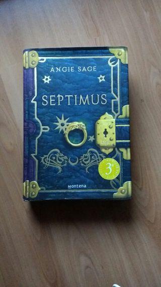 """Septimus"" de Angie Sage"