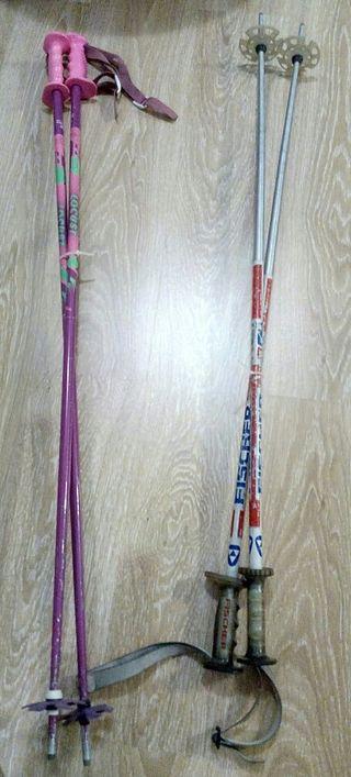 palos de esquí