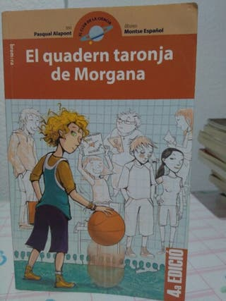 El quadern taronja de Morgana.