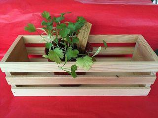 mini jardinera de madera